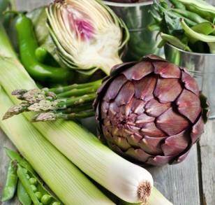 prebiotic-foods-566x540